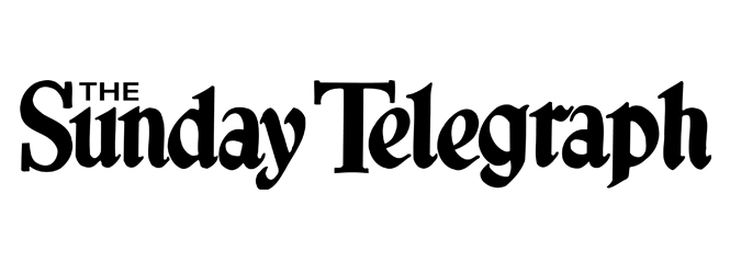 The Sunday telegraph banner image